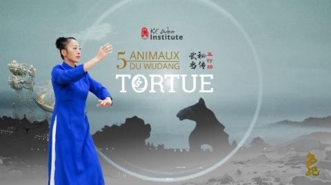 Les 5 animaux du Wudang – Tortue